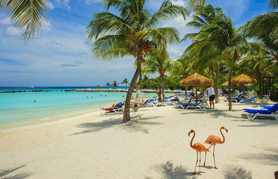 Pacote para Aruba